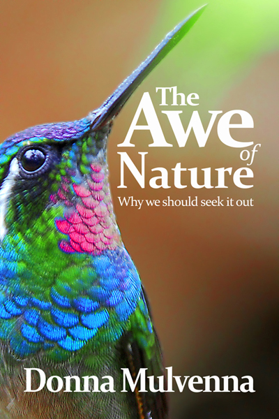 TheAweOfNature_Coverx400
